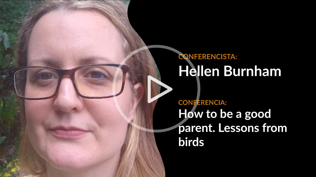 Ver conferencia Hellen Burnham, How to be a good parent. Lessons from birds